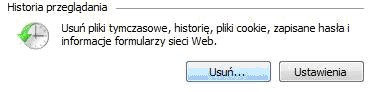 Internet Explorer, historia przeglądania stron