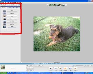 katalogowanie zdjęć, Picassa